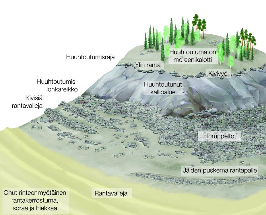 Maan kohoaminen paljastaa muinaisrantoja.